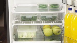 Nhiệt độ tủ lạnh chỉ kìm hãm sự phát triển của vi sinh vật